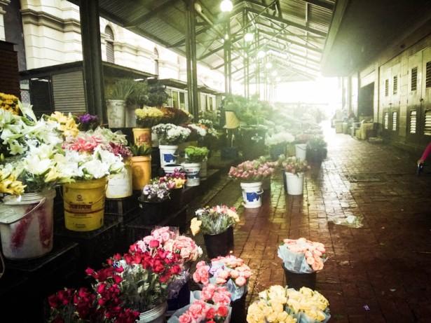 flower market-4